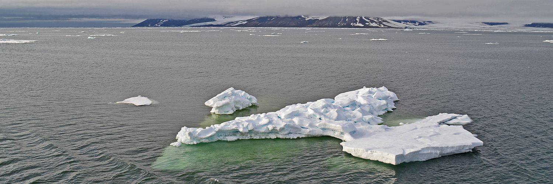 Eisberge vor Franz Josef Land