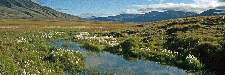 Das Advental bei Longyearbyen - hier startet die Spitzbergen Reise