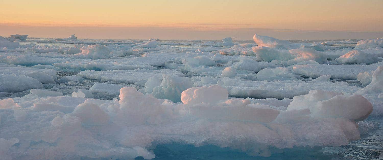 Meereis Ostgrönland