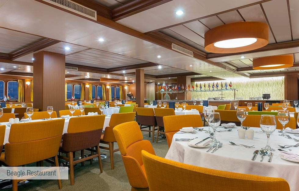 galapagos-santa-cruz-beagle-restaurant