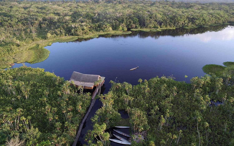 ecuador amazonas urwald sacha lodge leguan reisen gmbh. Black Bedroom Furniture Sets. Home Design Ideas
